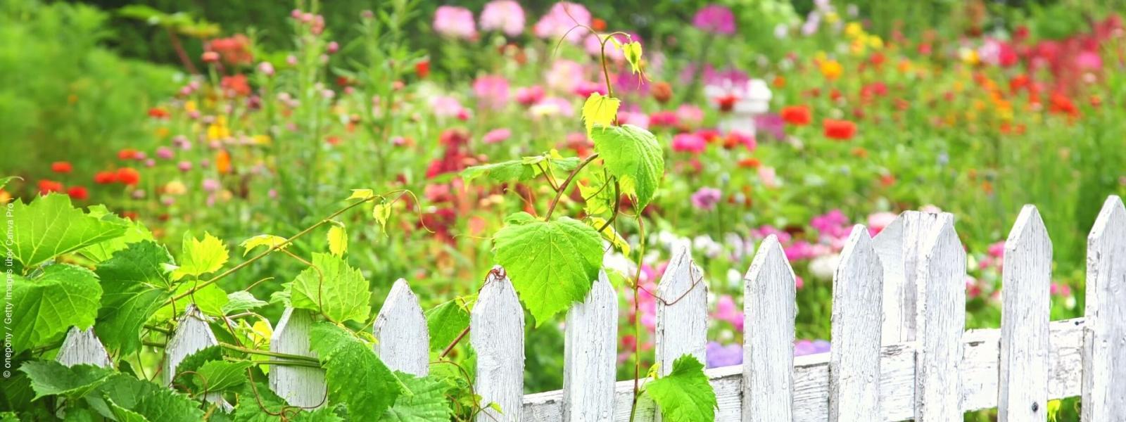 Lust auf bunte Vielfalt im Garten? Hier gibt's die Tipps. Foto: onepony / Getty Images über Canva Pro