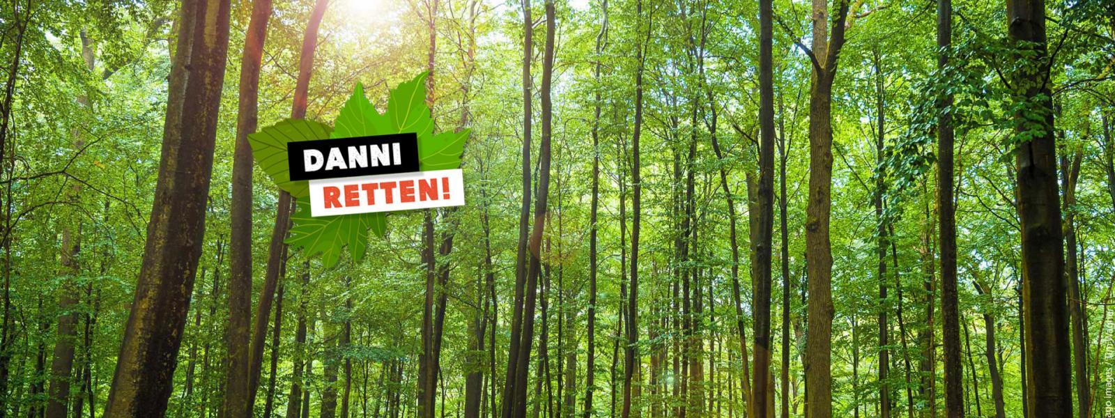 Alter Wald statt neue Straßen! Danni retten! Credit: imago images / Tim Wagner