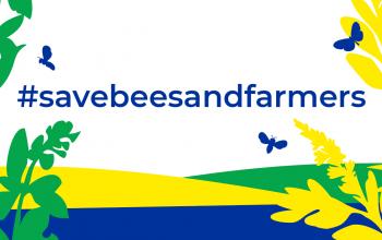 Bienen, Bauern und Bäuerinnen retten! Jetzt die Europäische Bürgerinitiative für Agrarwende und Artenvielfalt unterstützen.